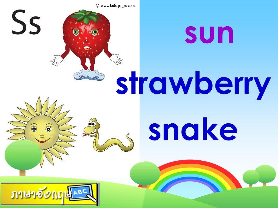 sun strawberry snake
