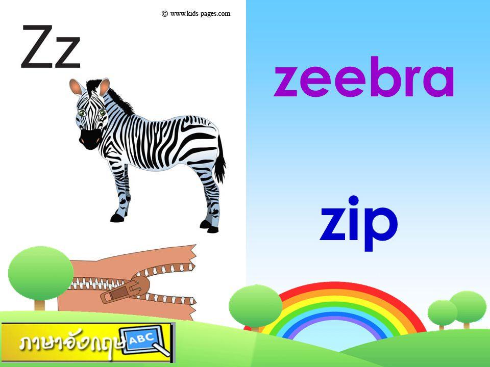 zeebra zip