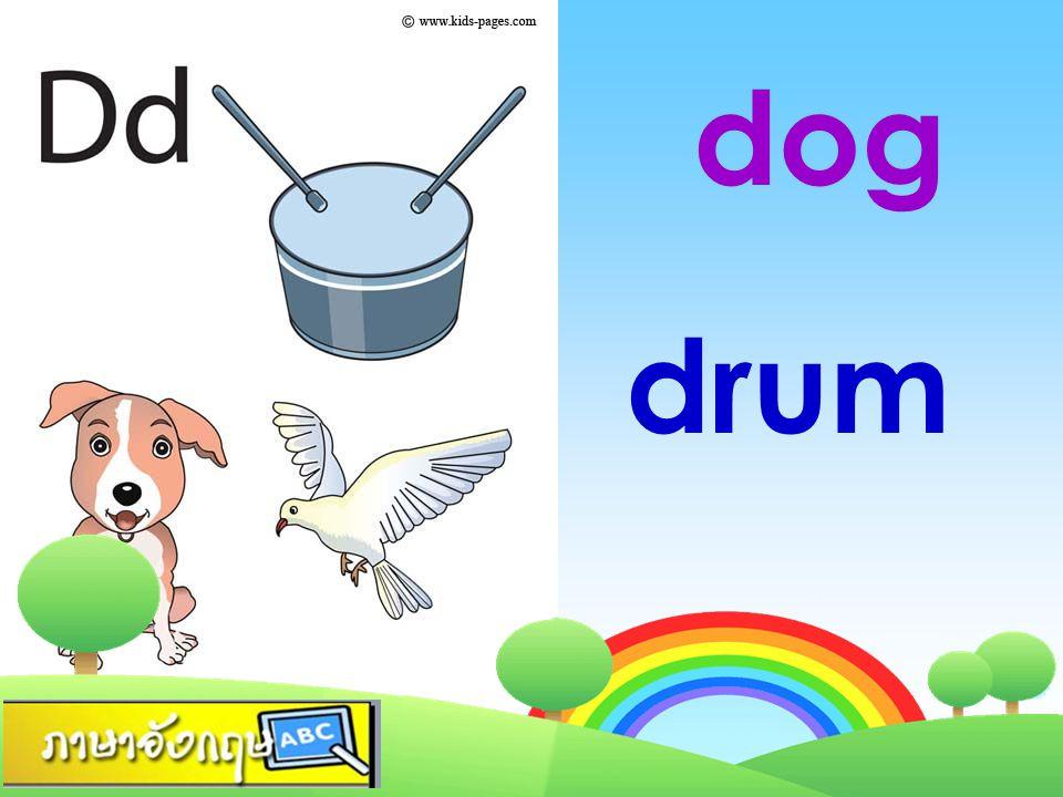 dog drum