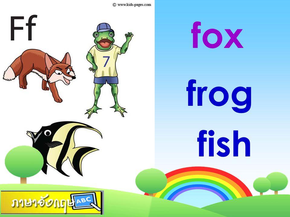fox frog fish