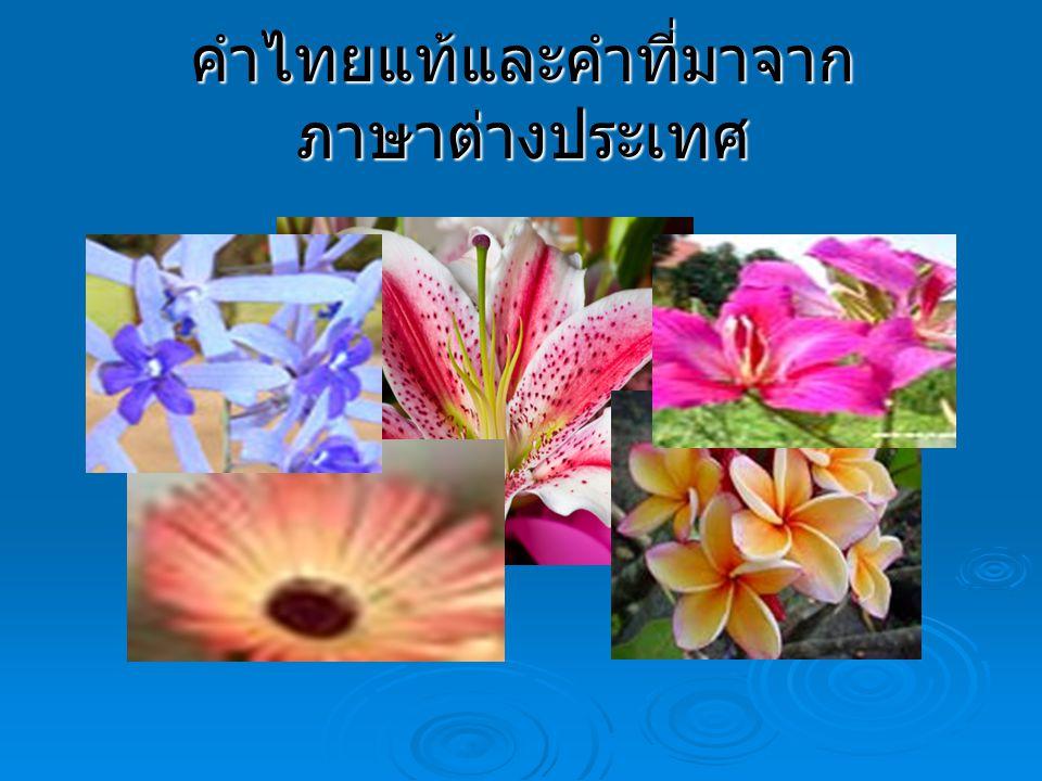 คำไทยแท้และคำที่มาจากภาษาต่างประเทศ