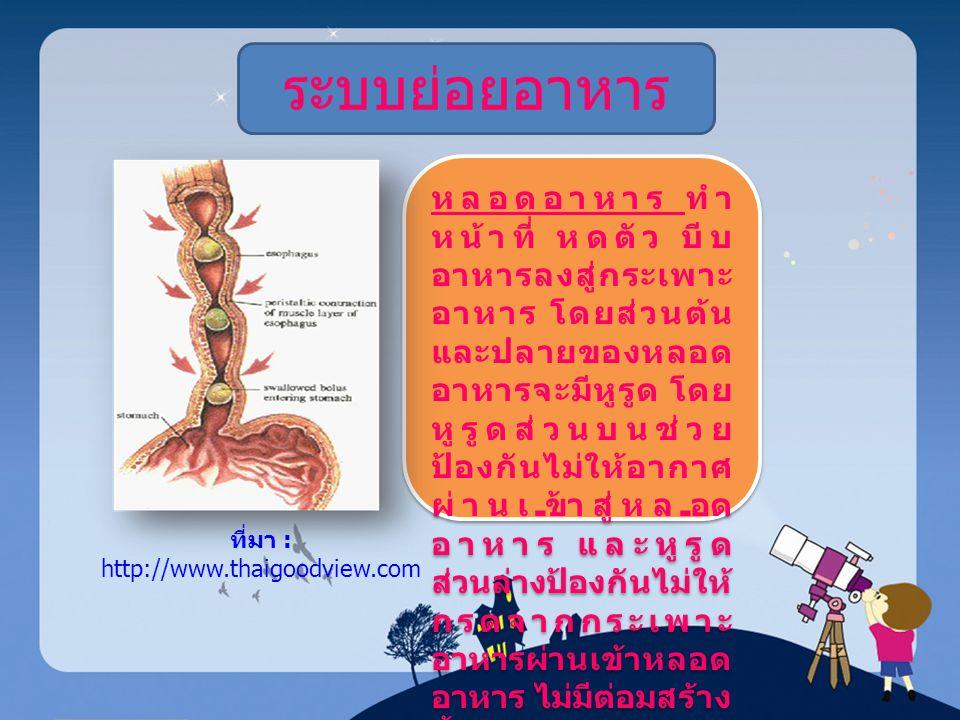 ที่มา : http://www.thaigoodview.com