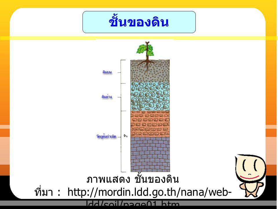 ชั้นของดิน ภาพแสดง ชั้นของดิน ที่มา : http://mordin.ldd.go.th/nana/web-ldd/soil/page01.htm