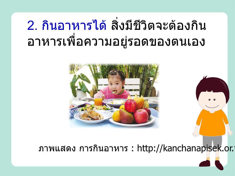 2. กินอาหารได้ สิ่งมีชีวิตจะต้องกินอาหารเพื่อความอยู่รอดของตนเอง
