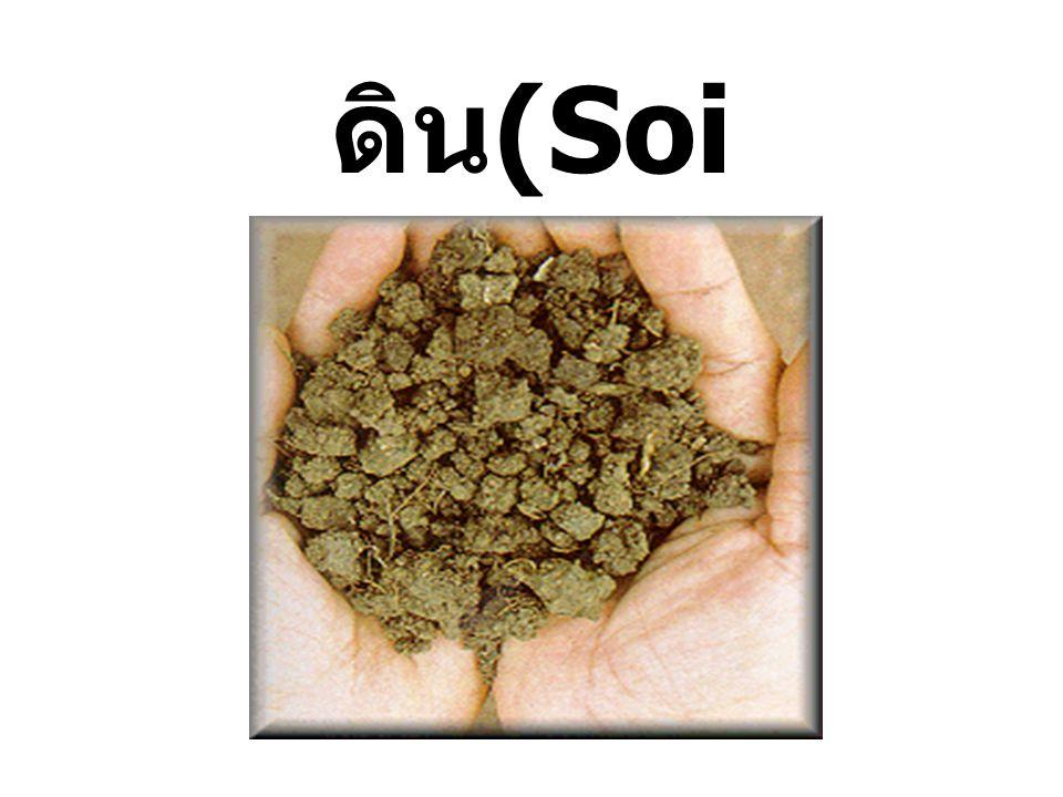 ดิน(Soil)