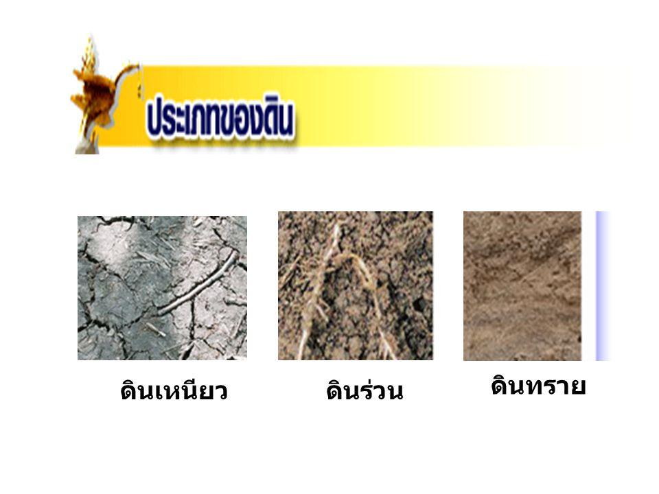 ดินทราย ดินเหนียว ดินร่วน