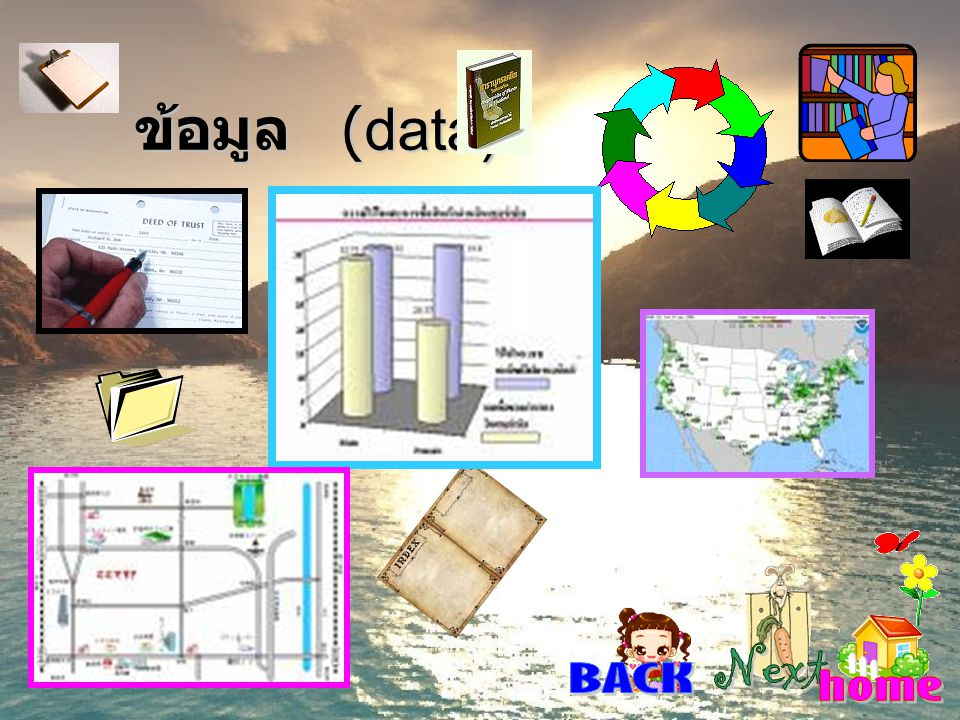 ข้อมูล (data) Next BACK home