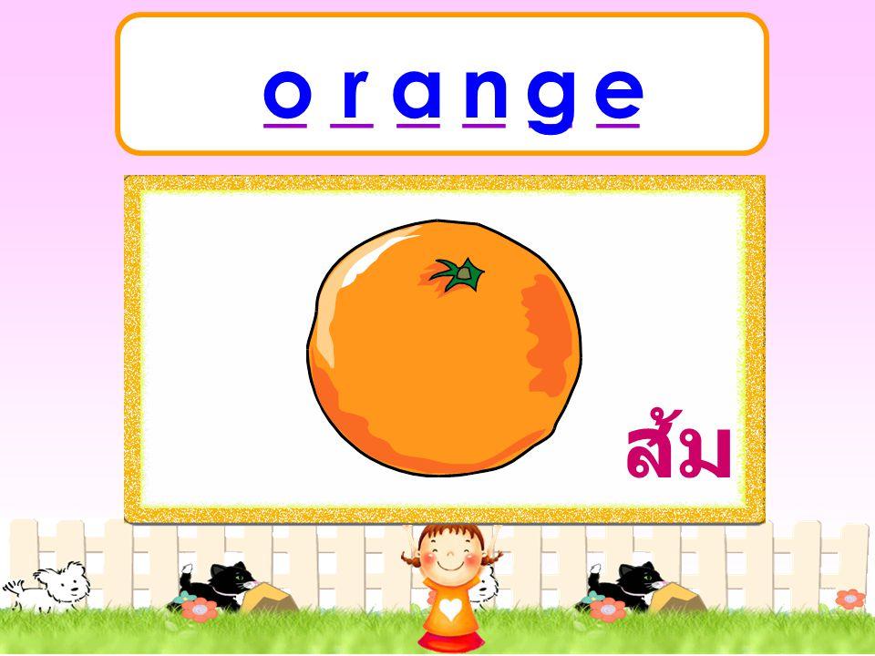 _ _ _ _ _ _ o r a n g e ส้ม