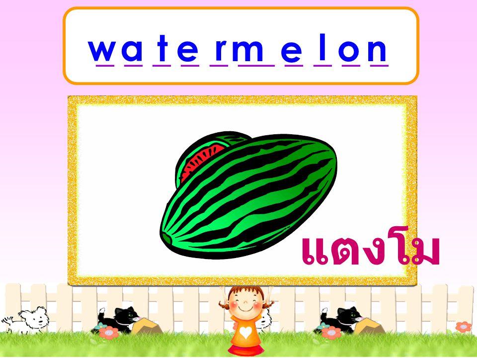 _ _ _ _ _ __ _ _ _ _ w a t e r m e l o n แตงโม