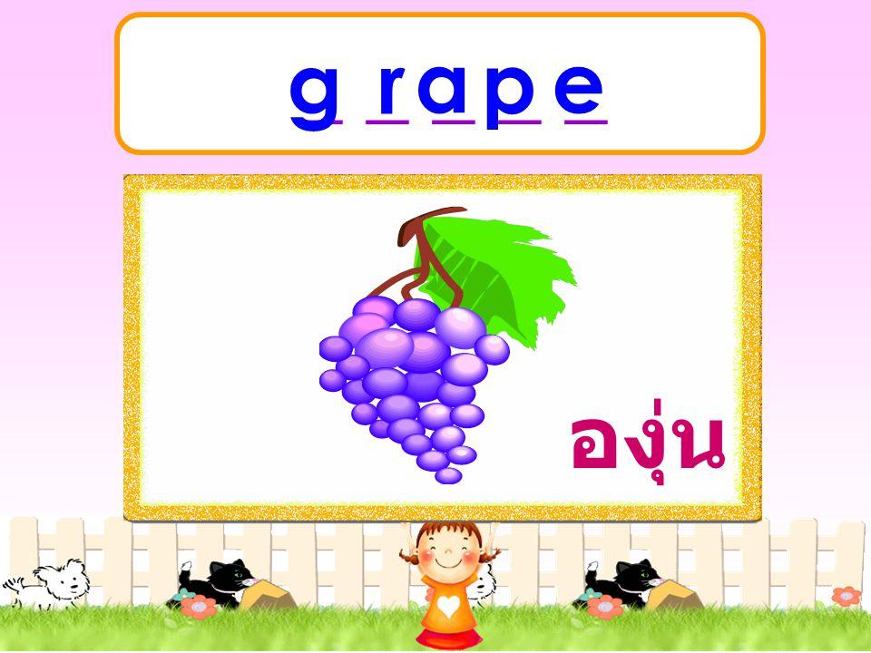 _ _ _ _ _ g r a p e องุ่น
