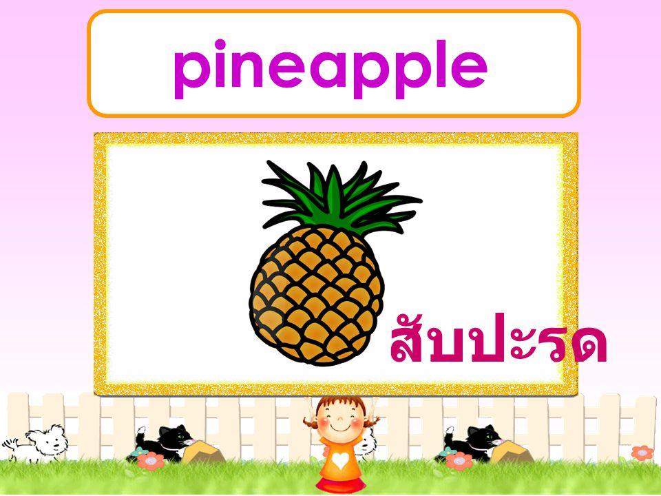 pineapple สับปะรด