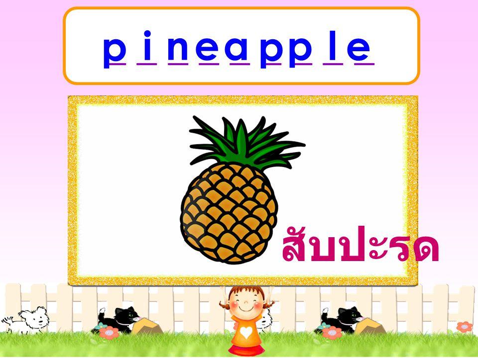 _ _ _ _ _ _ _ _ _ p i n e a p p l e สับปะรด