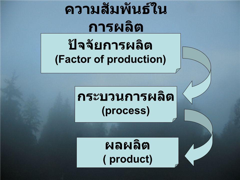 ความสัมพันธ์ในการผลิต