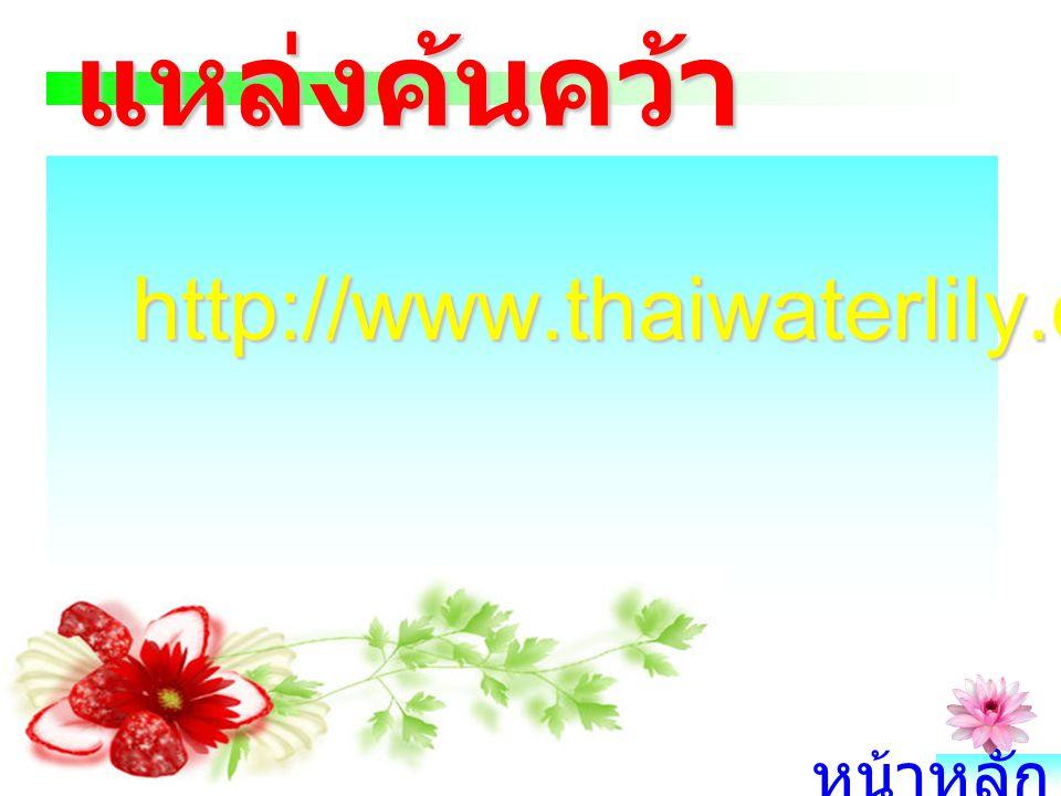 แหล่งค้นคว้า http://www.thaiwaterlily.com/topf7.asp หน้าหลัก