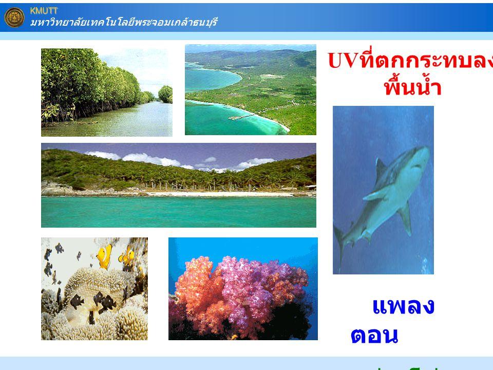 UVที่ตกกระทบลงพื้นน้ำ