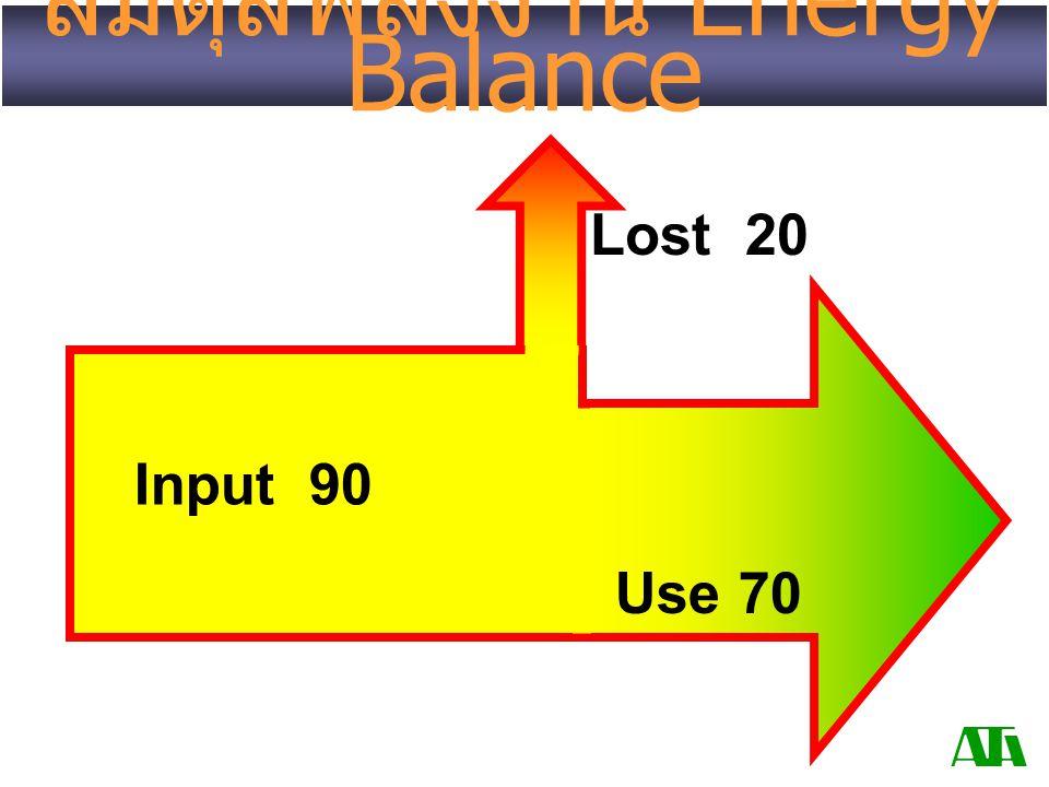 สมดุลพลังงาน Energy Balance