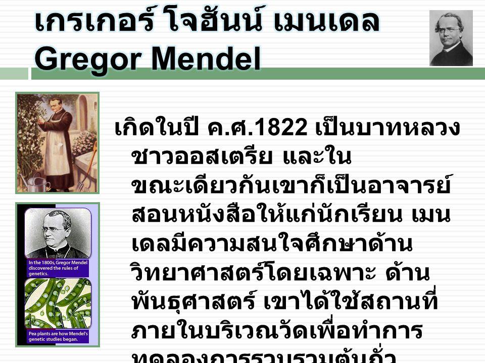 เกรเกอร์ โจฮันน์ เมนเดล Gregor Mendel