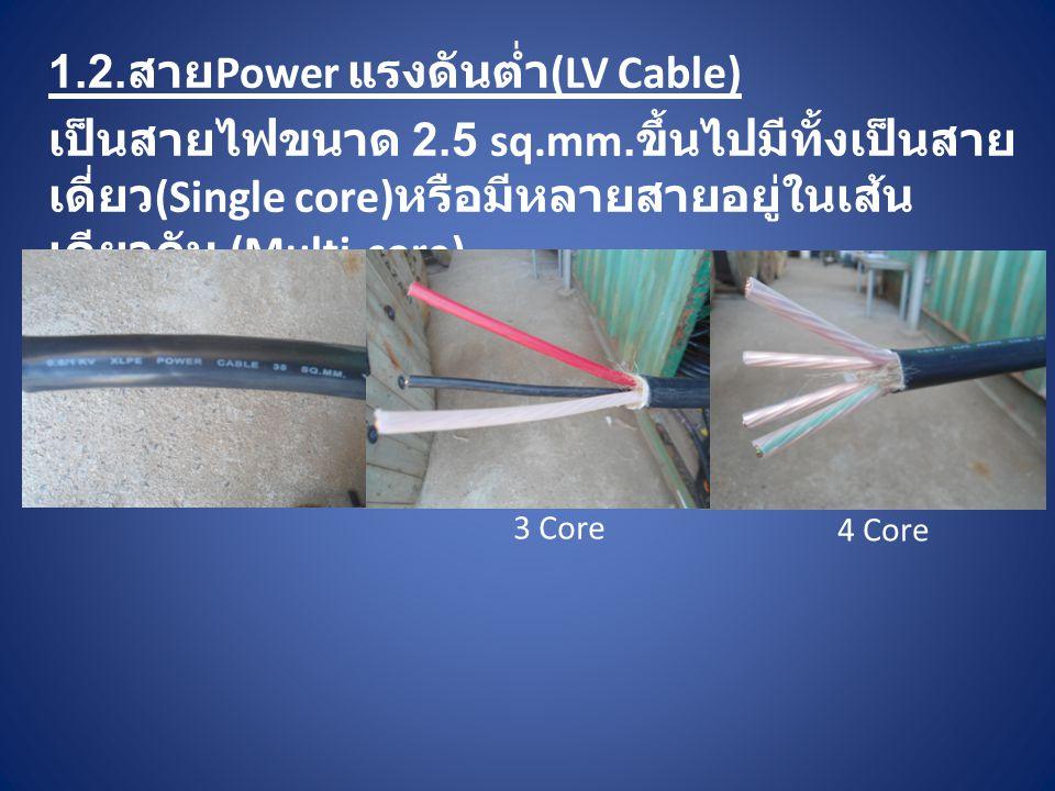 1.2.สายPower แรงดันต่ำ(LV Cable)