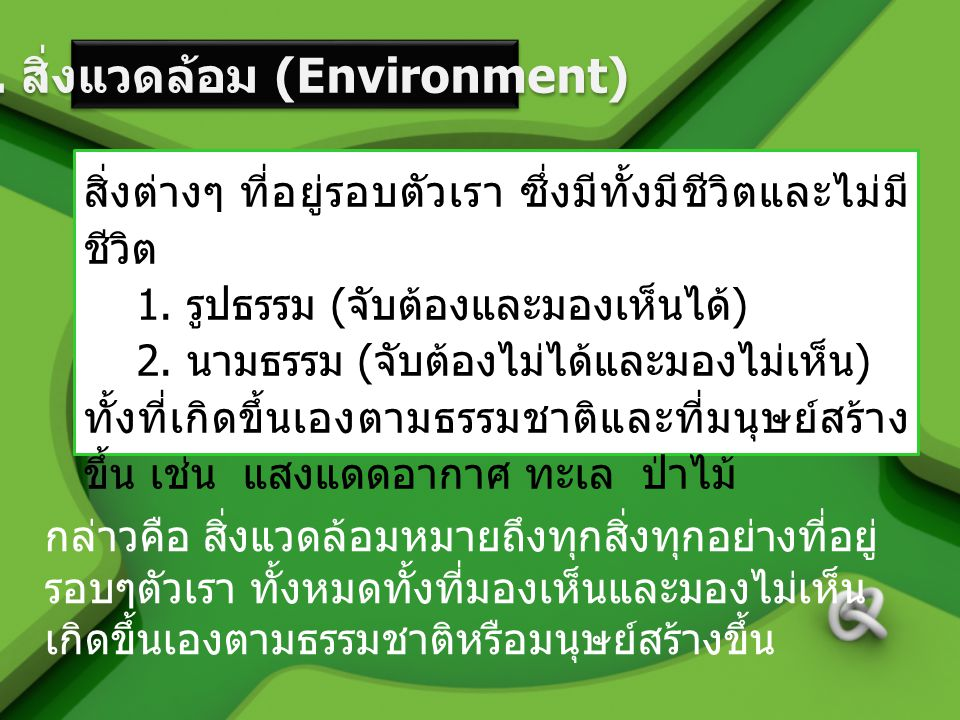 2. สิ่งแวดล้อม (Environment)