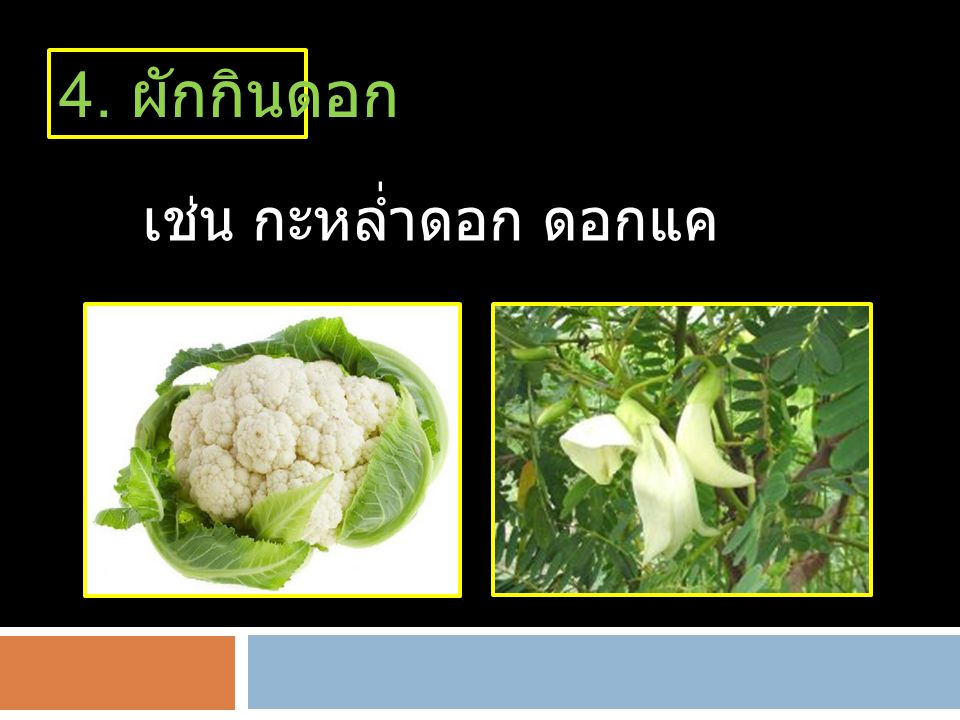 4. ผักกินดอก เช่น กะหล่ำดอก ดอกแค