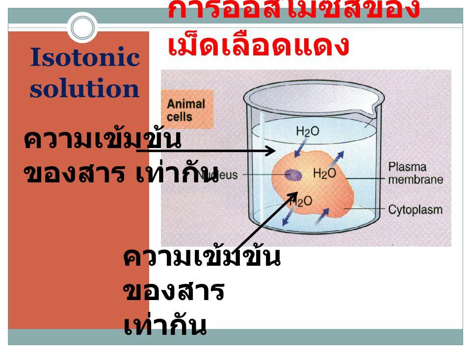 การออสโมซีสของเม็ดเลือดแดง