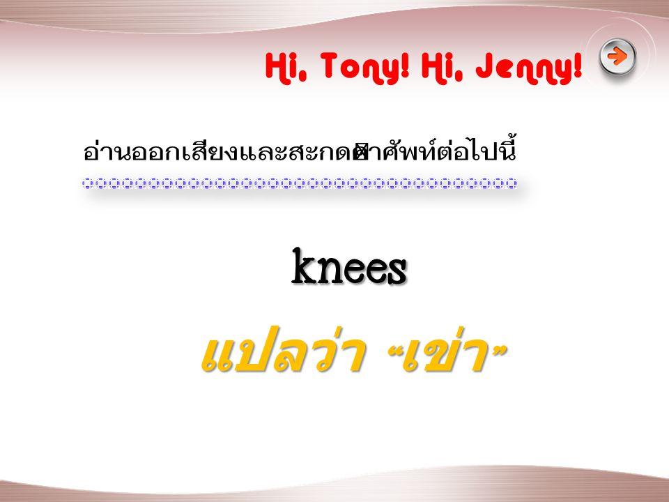 knees แปลว่า เข่า Hi, Tony! Hi, Jenny!