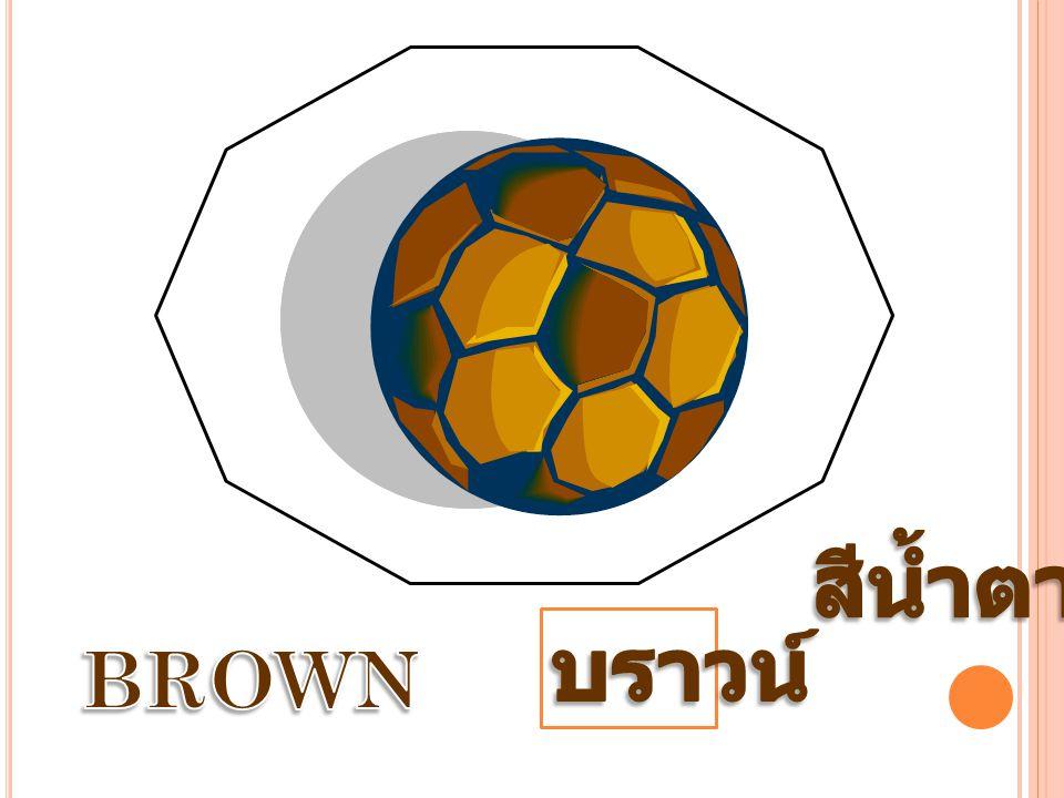 สีน้ำตาล บราวน์ BROWN