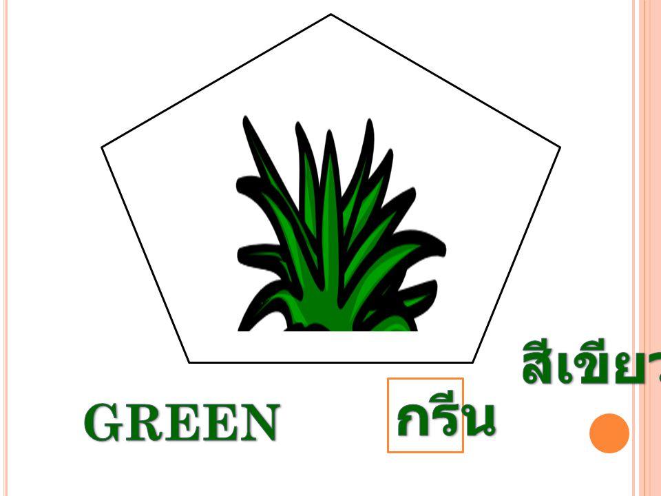 สีเขียว กรีน GREEN