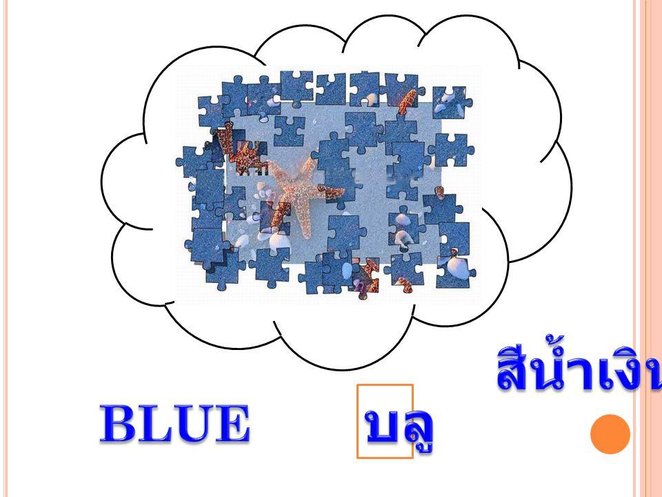 สีน้ำเงิน บลู BLUE
