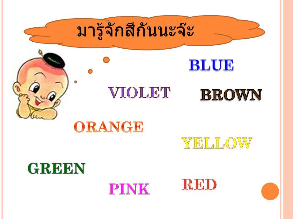 มารู้จักสีกันนะจ๊ะ BLUE VIOLET BROWN ORANGE YELLOW GREEN RED PINK