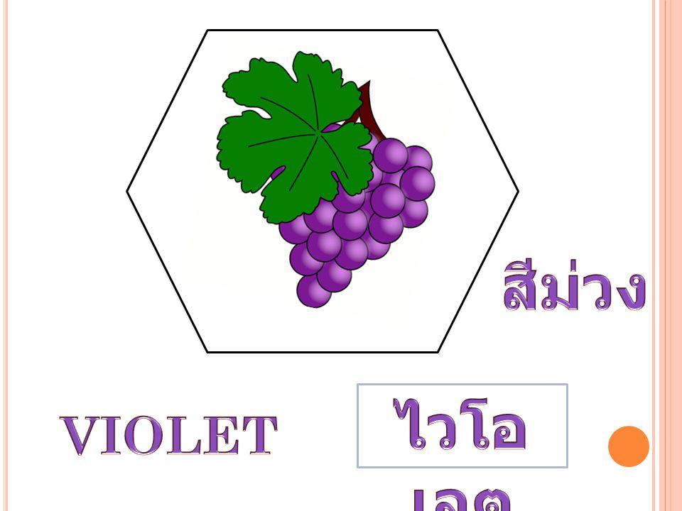 สีม่วง ไวโอเลต VIOLET