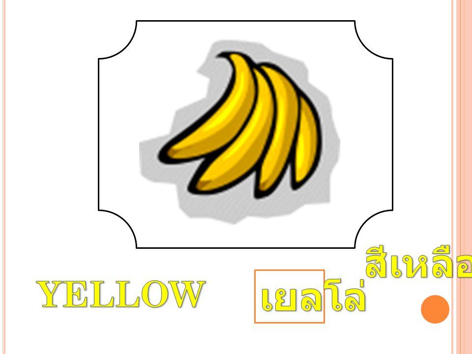 สีเหลือง YELLOW เยลโล่
