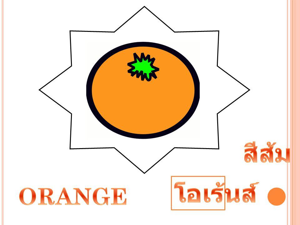 สีส้ม โอเร้นส์ ORANGE