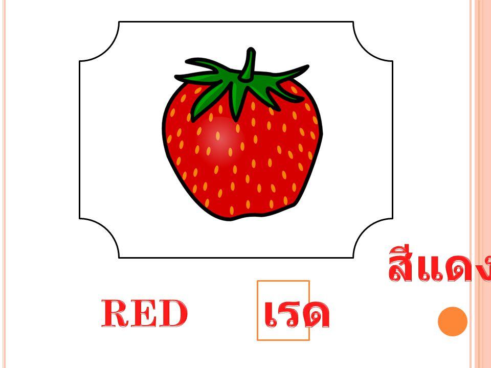 สีแดง เรด RED