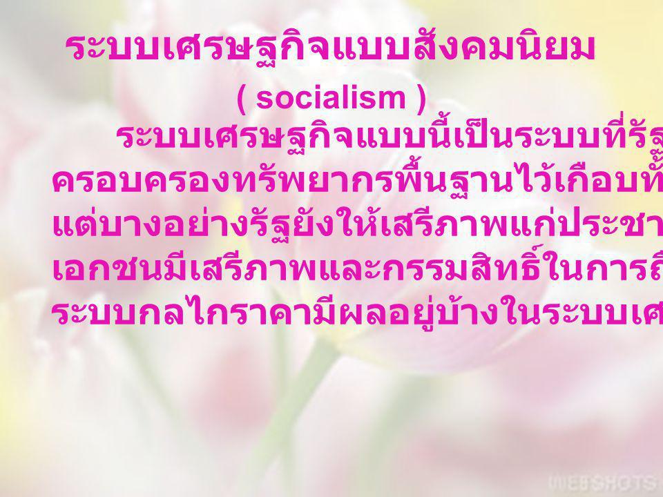 ระบบเศรษฐกิจแบบสังคมนิยม ( socialism )