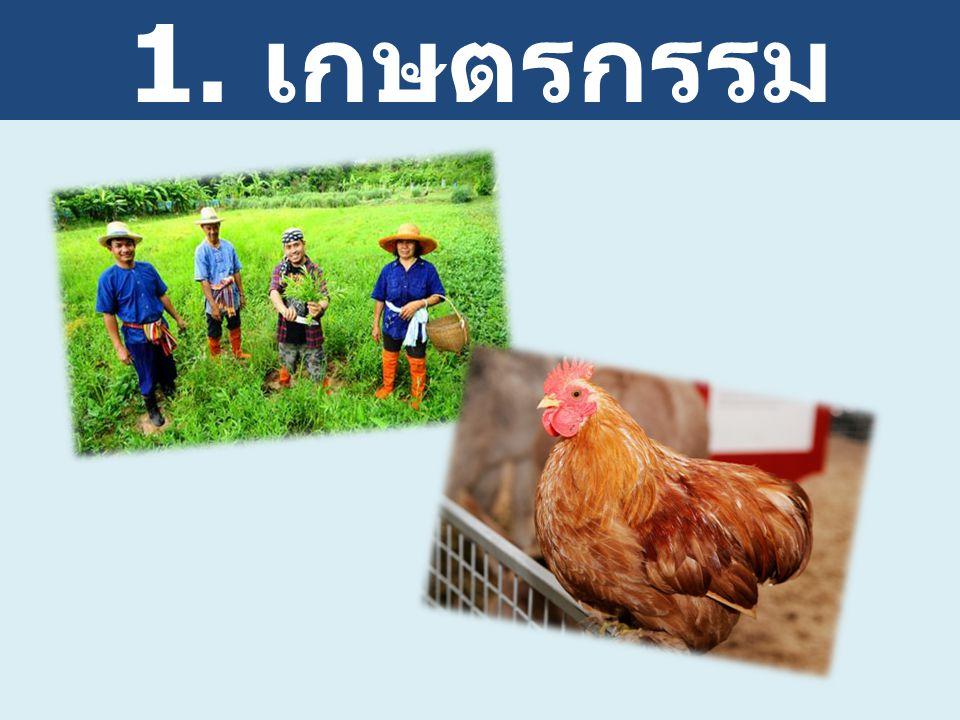 1. เกษตรกรรม