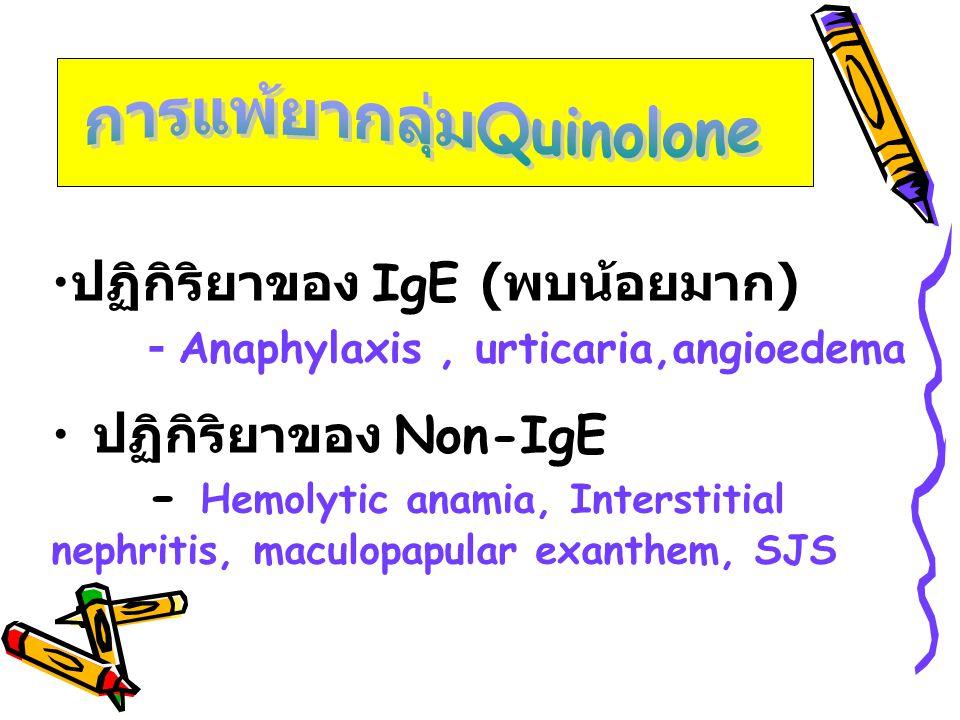 การแพ้ยากลุ่มQuinolone