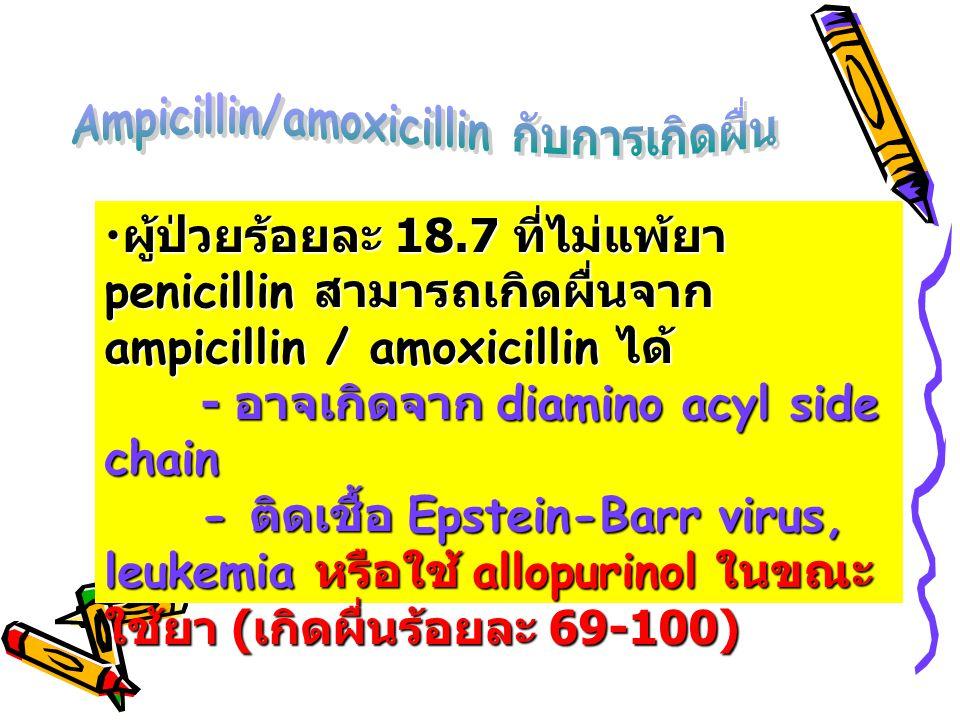Ampicillin/amoxicillin กับการเกิดผื่น