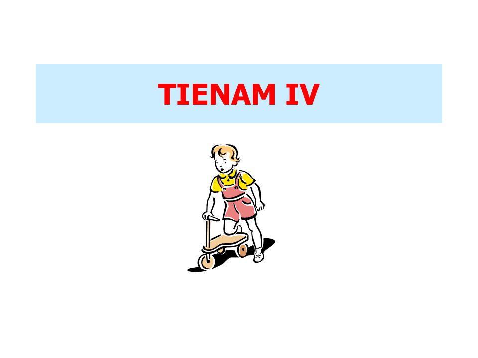 TIENAM IV