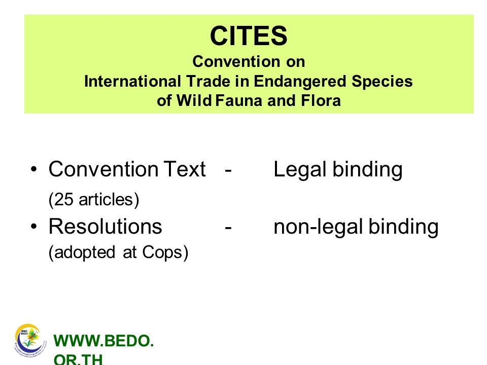 CITES Convention on International Trade in Endangered Species of Wild Fauna and Flora