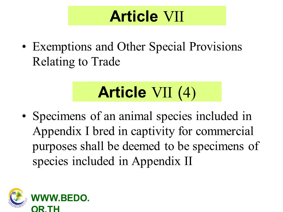 Article VII Article VII (4)