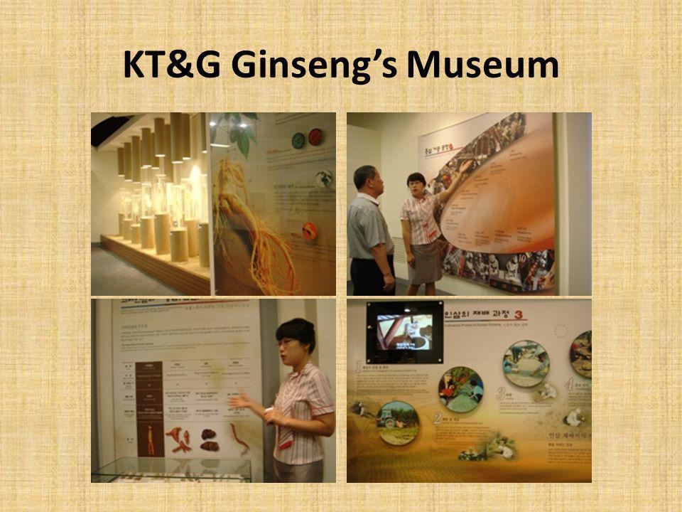 KT&G Ginseng's Museum