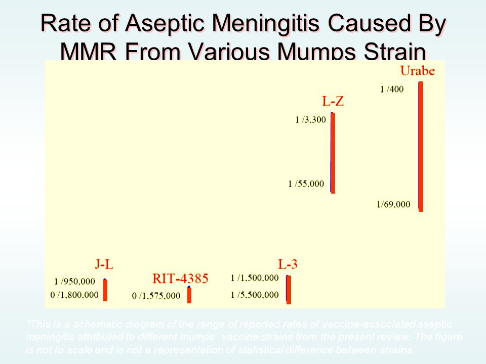 Rate of Aseptic Meningitis Caused By MMR From Various Mumps Strain