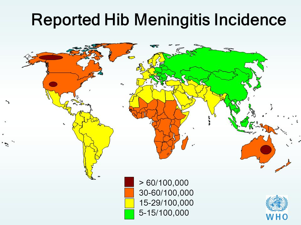 Reported Hib Meningitis Incidence