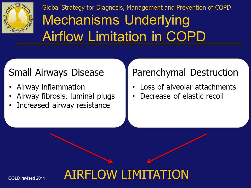Mechanisms Underlying Airflow Limitation in COPD