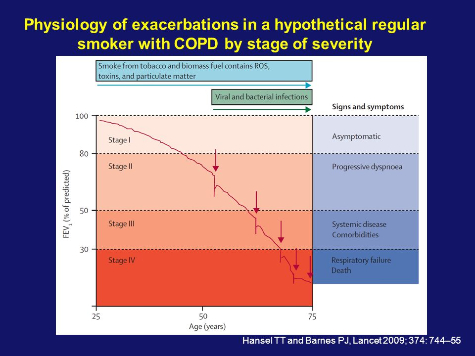 Physiology of exacerbations in a hypothetical regular smoker with COPD by stage of severity