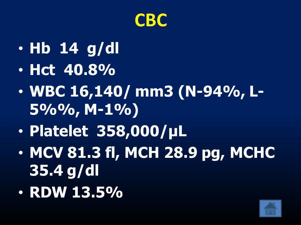 CBC Hb 14 g/dl Hct 40.8% WBC 16,140/ mm3 (N-94%, L-5%%, M-1%)