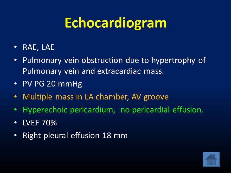 Echocardiogram RAE, LAE
