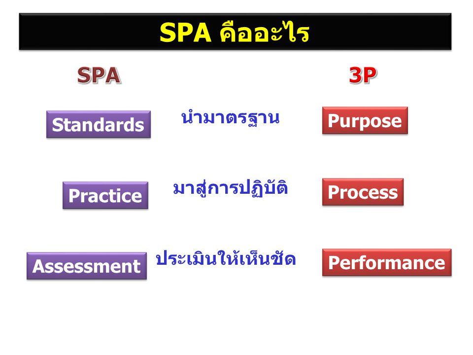 SPA คืออะไร SPA 3P นำมาตรฐาน Purpose Standards มาสู่การปฏิบัติ Process