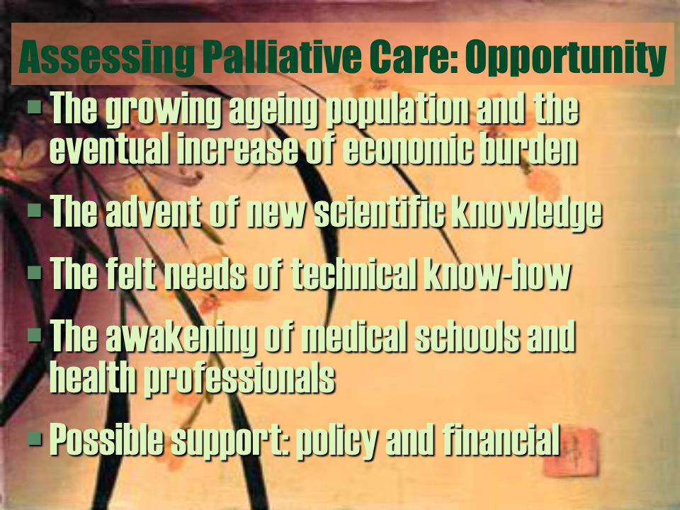Assessing Palliative Care: Opportunity